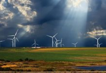 Zambia Can Harness Renewable Resources to Promote Sustainable Growth