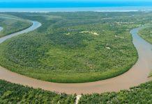 Rufiji River estuary, Lindi Region, Tanzania